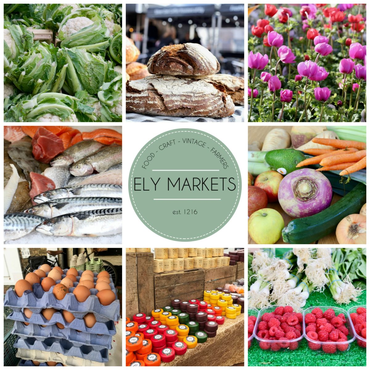 ely-markets-to-reopen