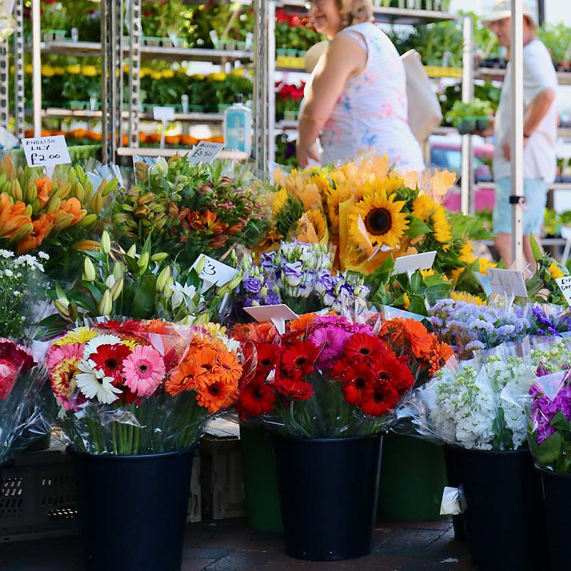 Goldings Garden Centre ely markets