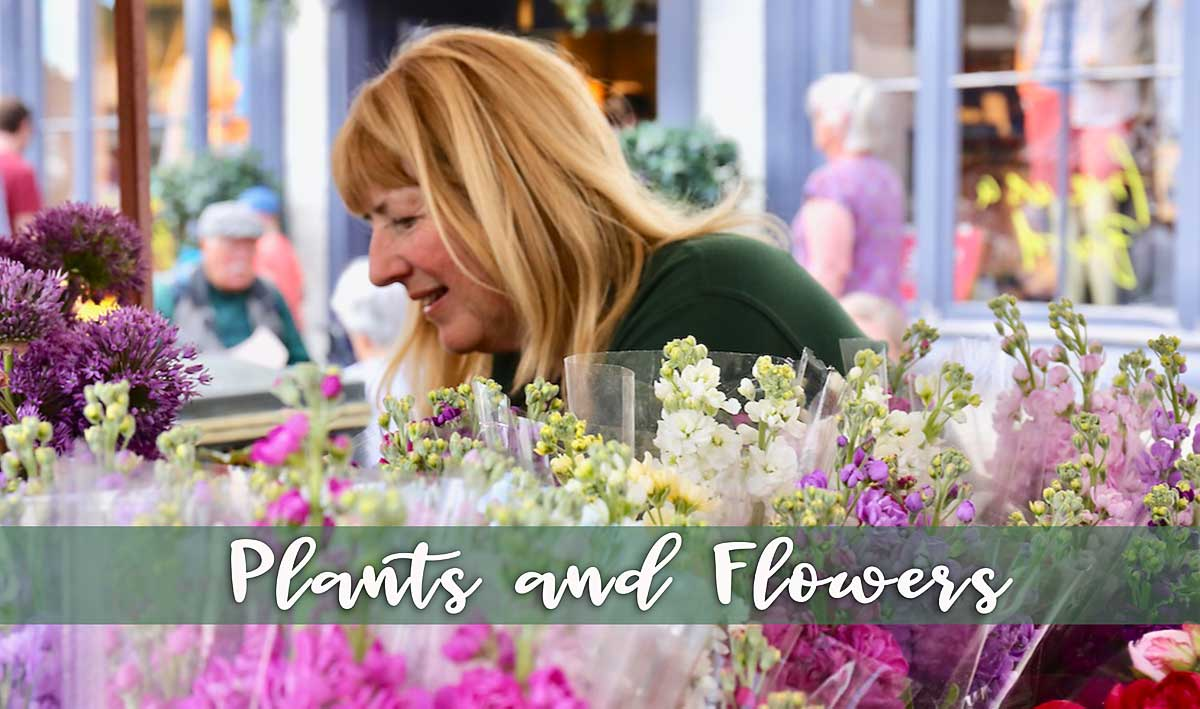 plants-and-flowers